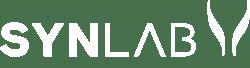 Latam-logo_-v_(Indigo)_0001_Camada-1